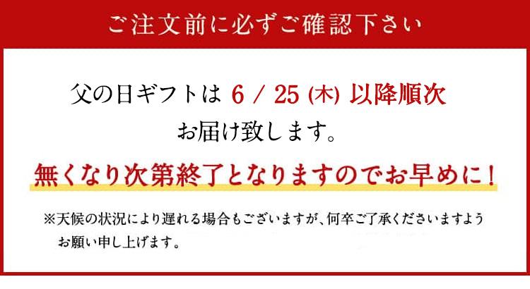 父の日ビールセットギフト受け付け6/19日まで