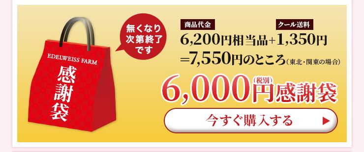 6,000円感謝袋