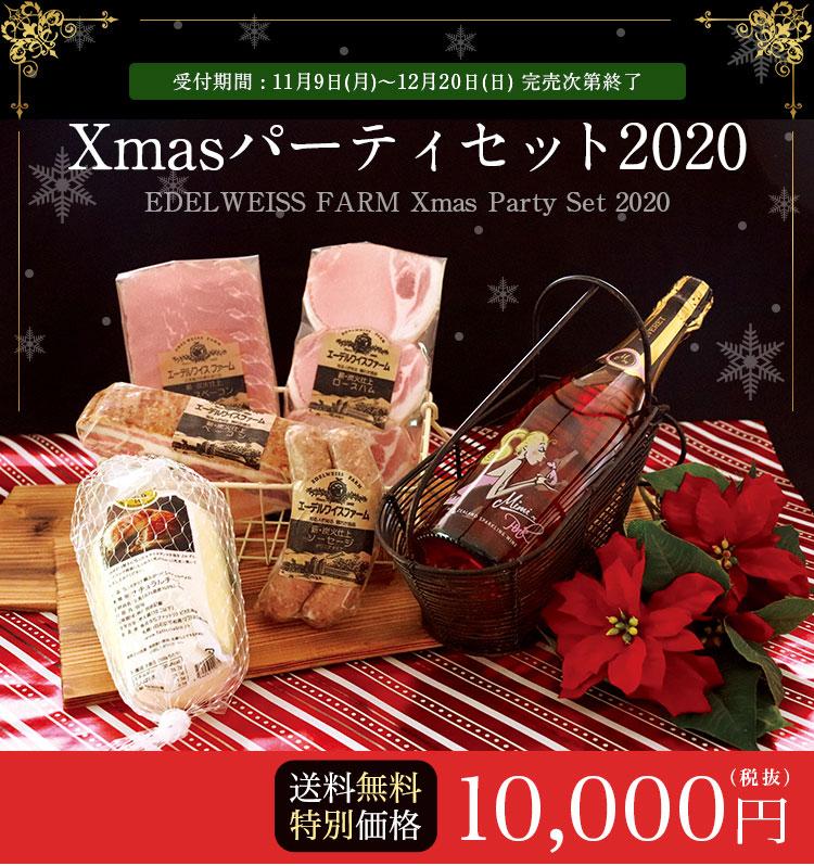 【送料無料・特別価格10,000円】クリスマスパーティーセット2020 ハム・ベーコン・ソーセージ・チーズ・スパークリング
