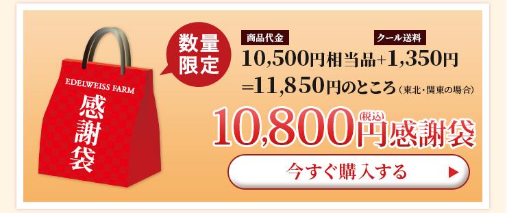 10,000円感謝袋