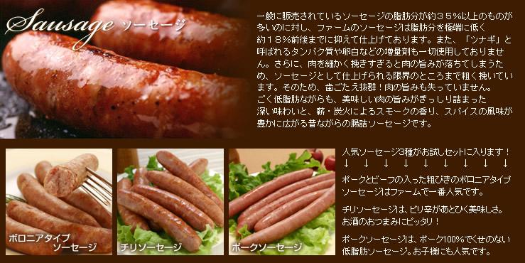 〜ソーセージ〜 凝縮した肉の旨みが詰まった香り豊かなソーセージ